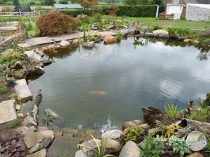 Garden Design 8